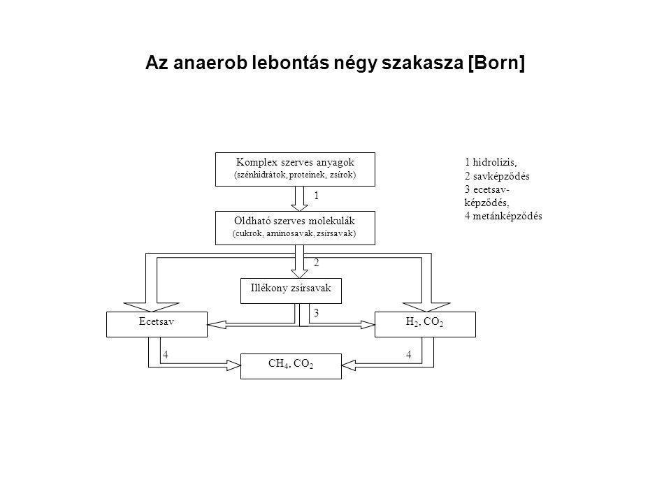 Az anaerob lebontás négy szakasza [Born]